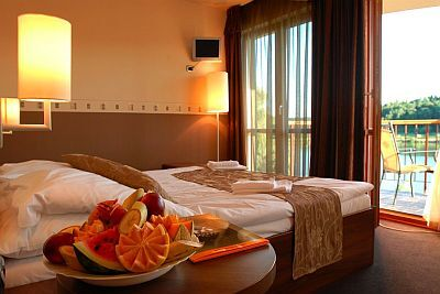 To Wellness Hotel 3* spacious large rooms with panoramic view
