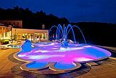 4* wellness weekend in the Danube Bend at Silvanus Hotel Visegrad